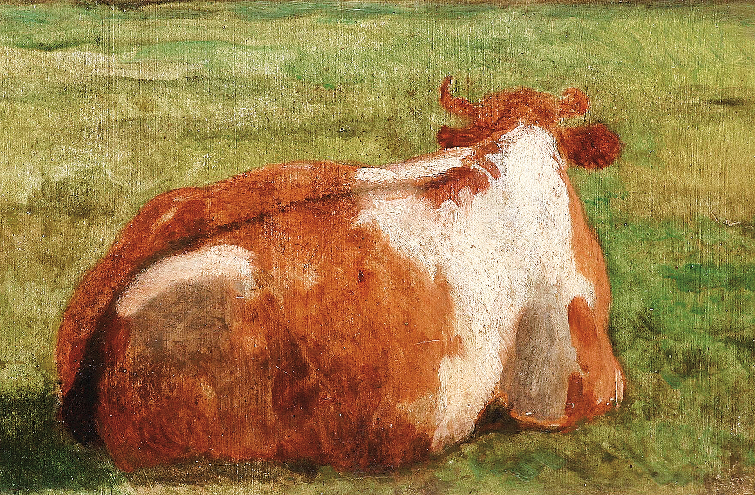 """A lying cow on the pasture"""