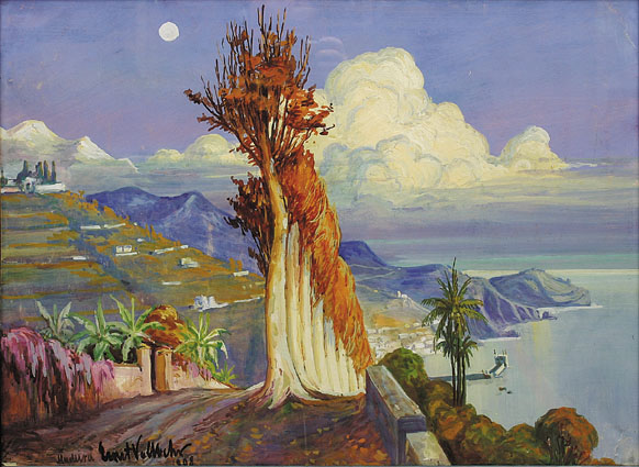 """A prospect of Funchal (Madeira)"""