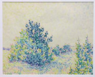 """A landscape in blossom"" (Impression)"