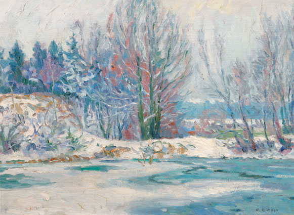 """A wintry pond in the woods near Hamburg"""