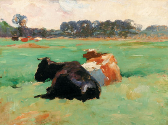 Two cows, black and tan, resting on a pasture
