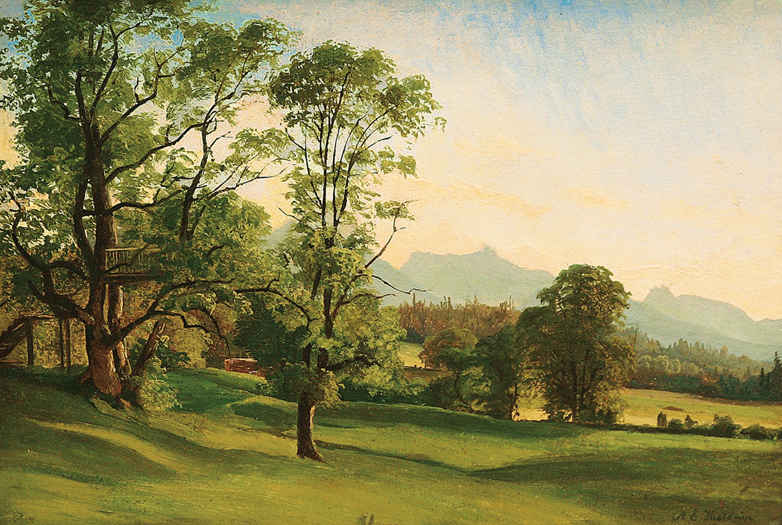"""A landscape in Southern Tyrol with meadows and trees, rock mountains beyond"""