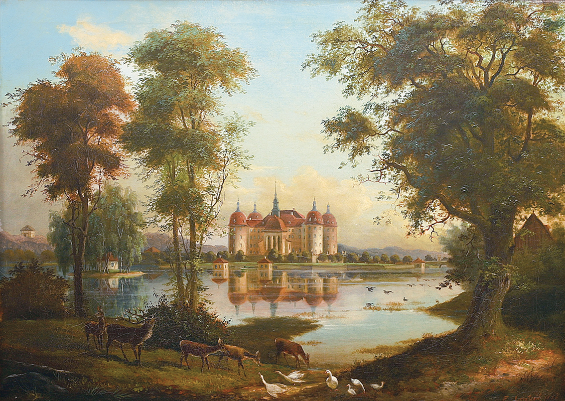 """A view on the Moritzburg"""