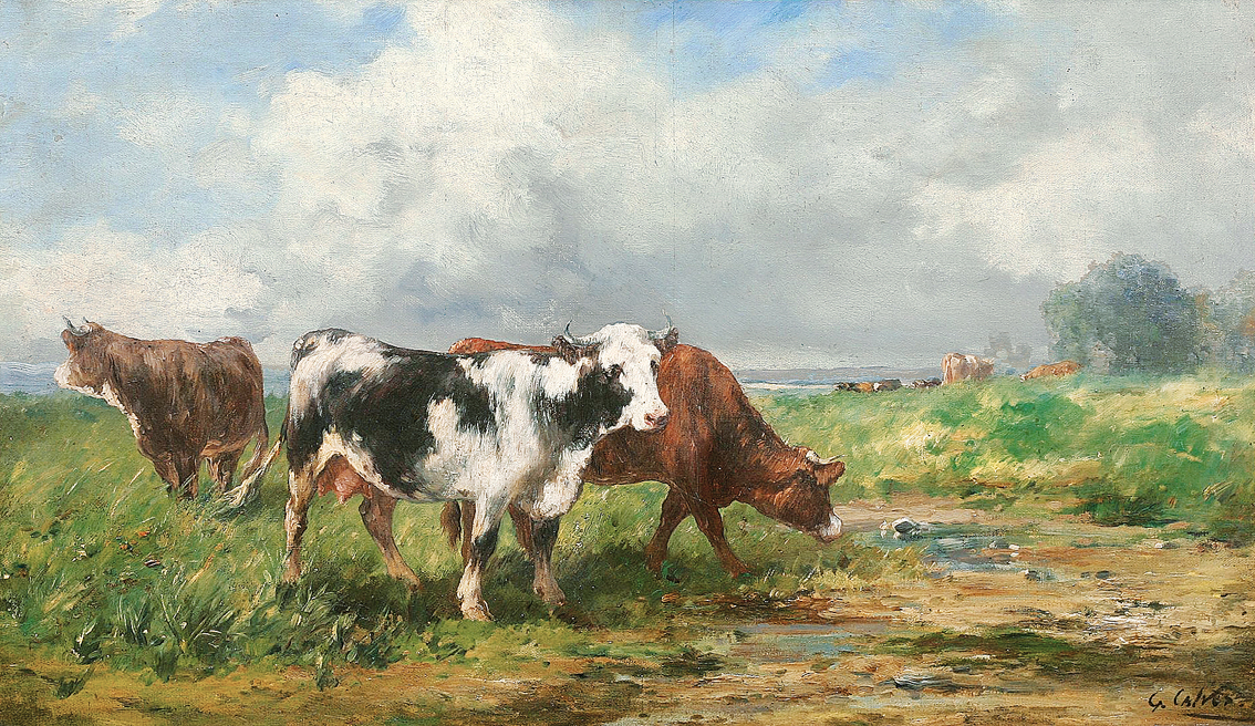 Cows out at feed in a wide landscape