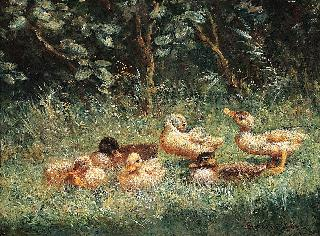 Six ducklings in the grass