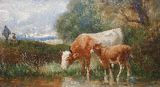 A cow and her calf at the water