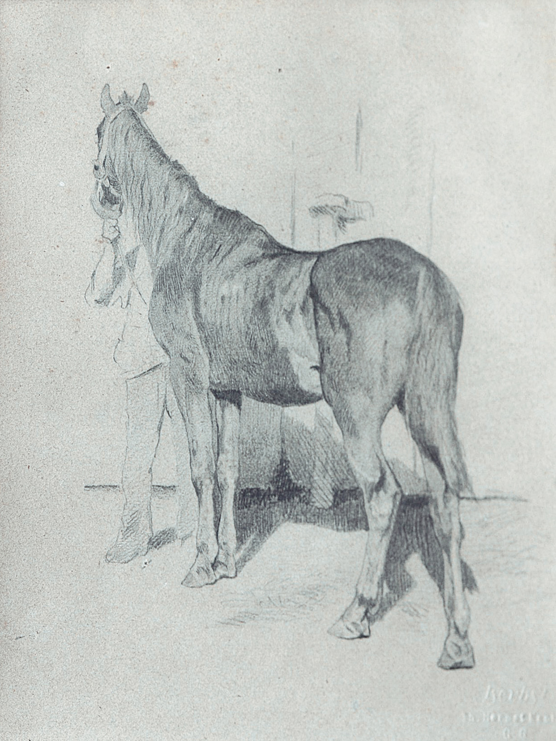 A horse and its owner
