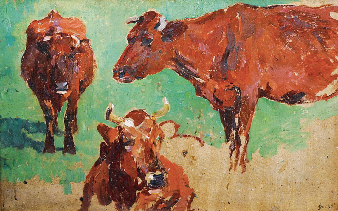 Studies of cows