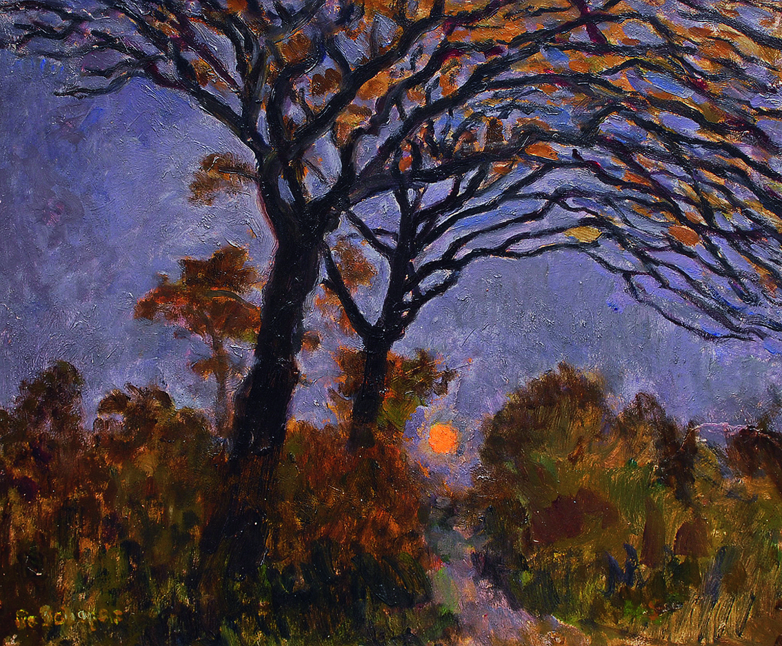 A group of trees in the moonlight