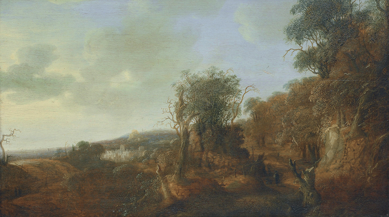 A landscape with a wanderer