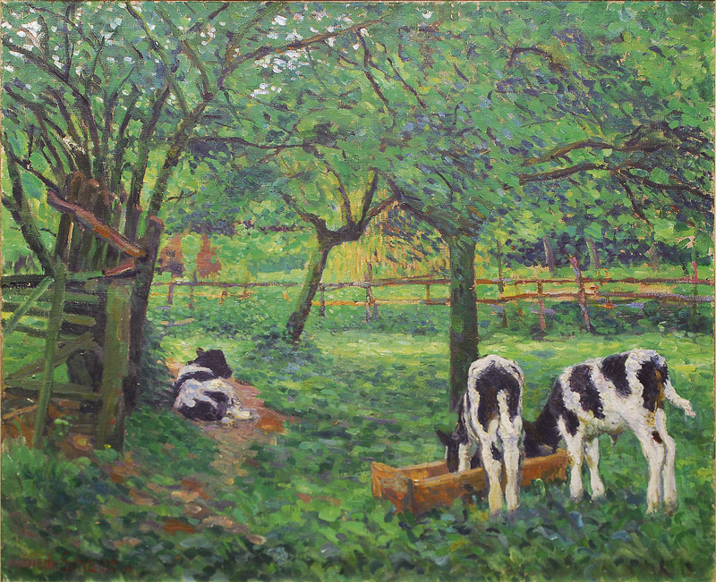 Calves in the orchard