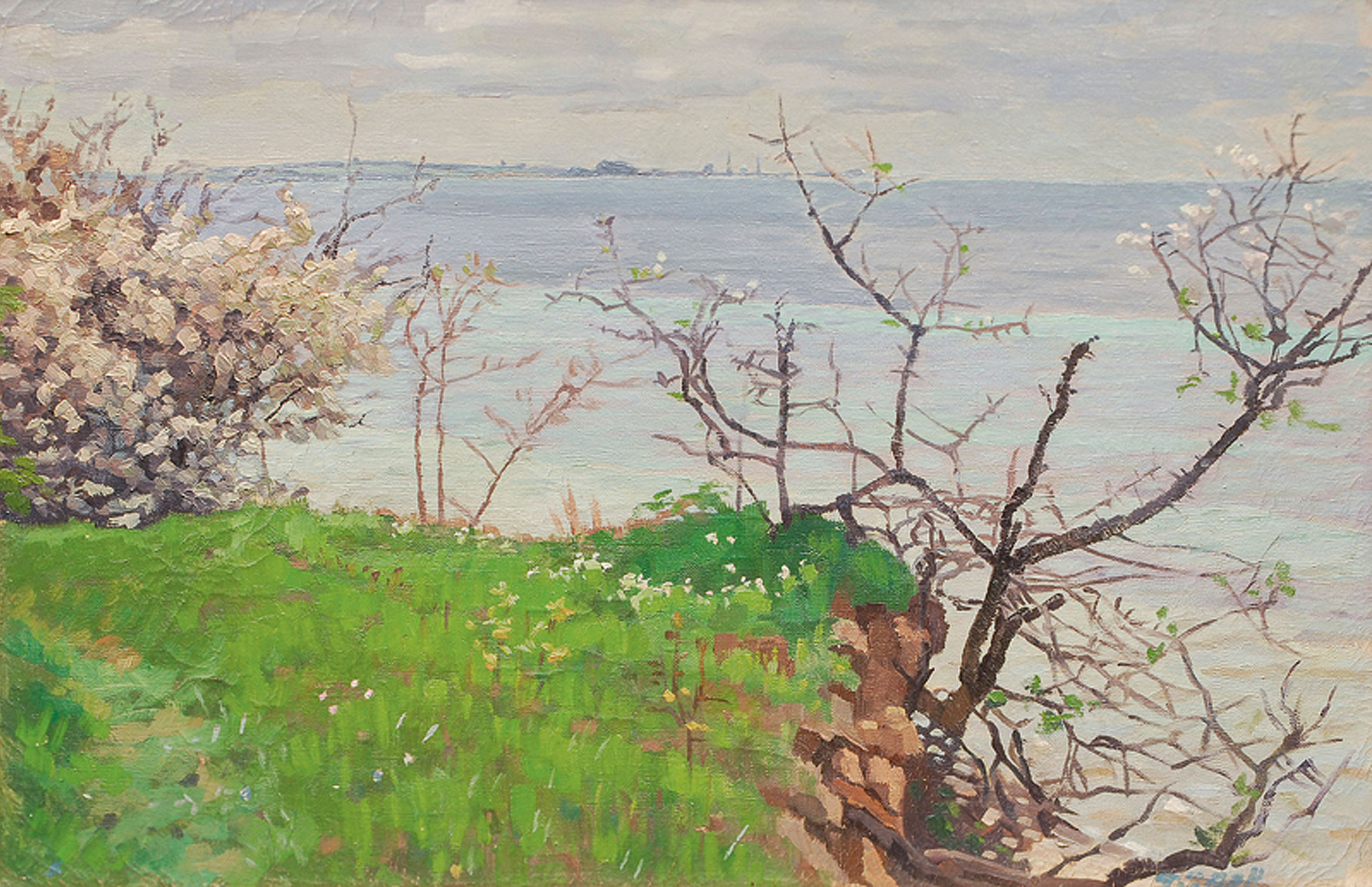 Blooming apple trees at the Baltic Sea