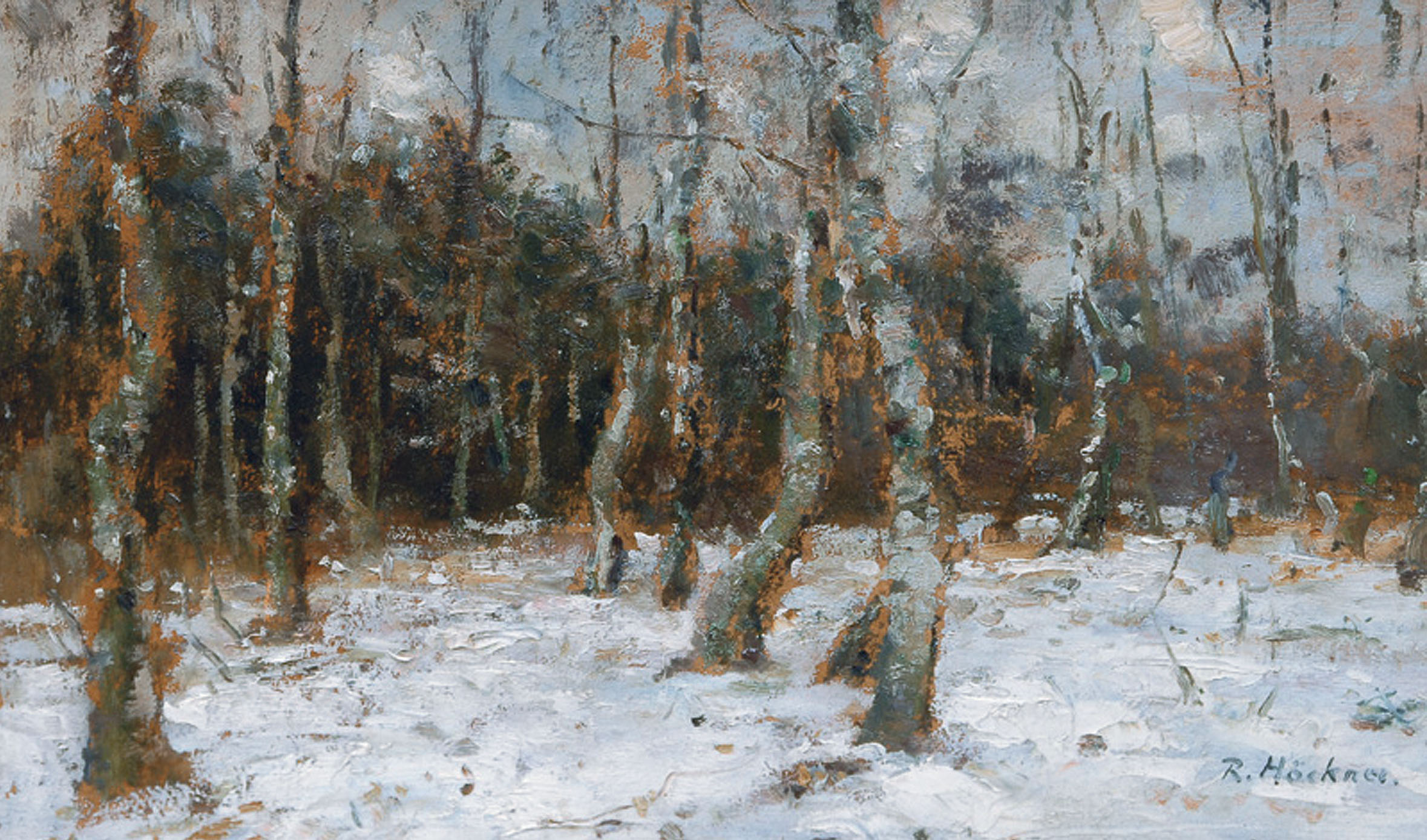 Birch forest in the winter