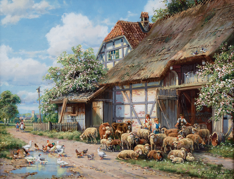 Sheep in front of the Shed