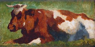 Red-White Tabby Cow
