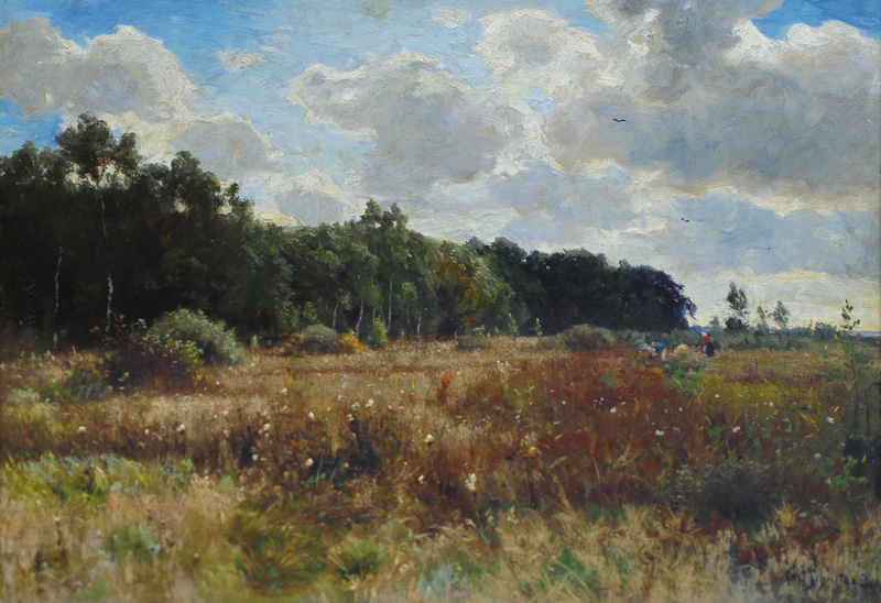 Landscape in Late Summer