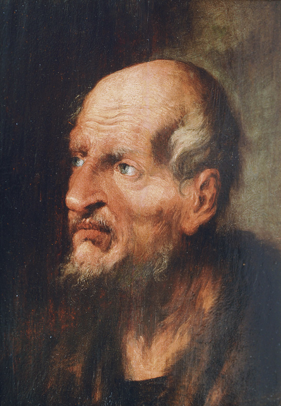 Study of the Head of an old Man