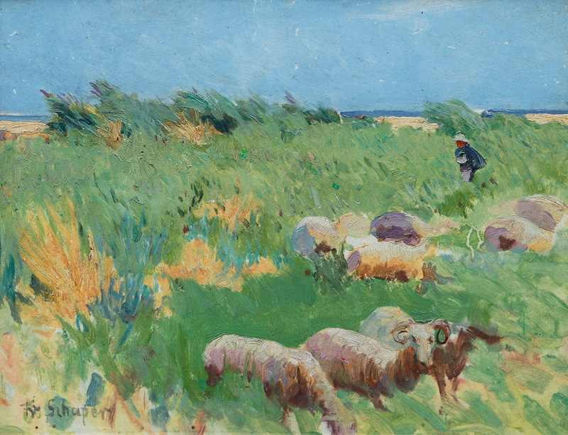 Sheep in the Dunes on Sylt