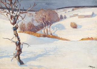 Snow-covered Landscape