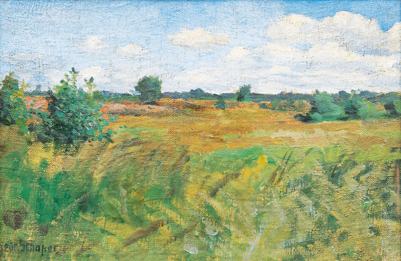 The Heath near Niendorf