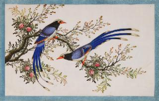 An album with chinese paintings