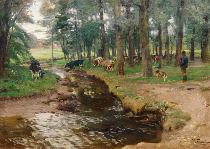 Cows in a Forest