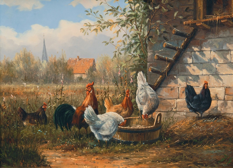Idyllic Chicken Run