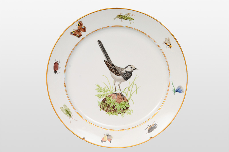A large circular plate with wagtail and insects
