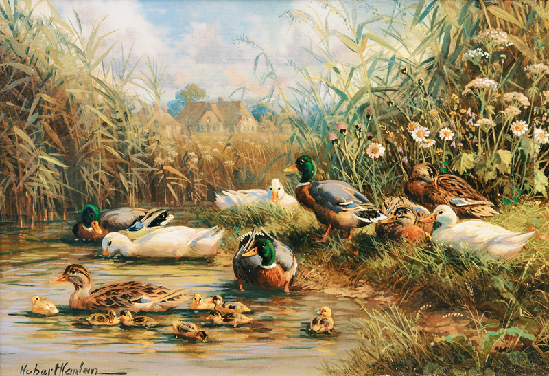 Ducks by a Pond