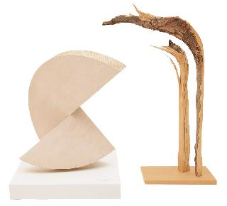 "A sculptur ""Dialog of wood"""