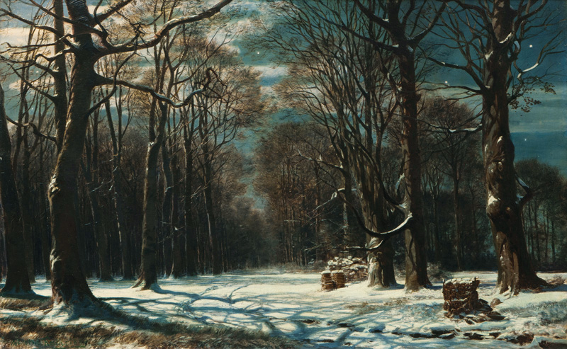 Night in a winterly Forest