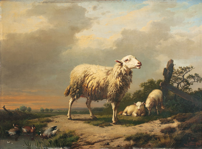 Sheep with Lambs and Ducks
