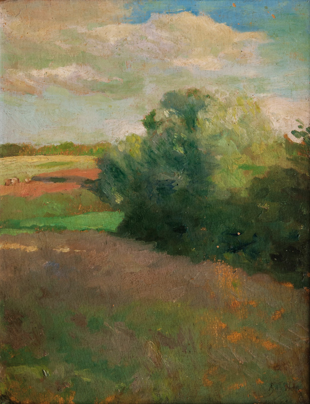 North German Landscape