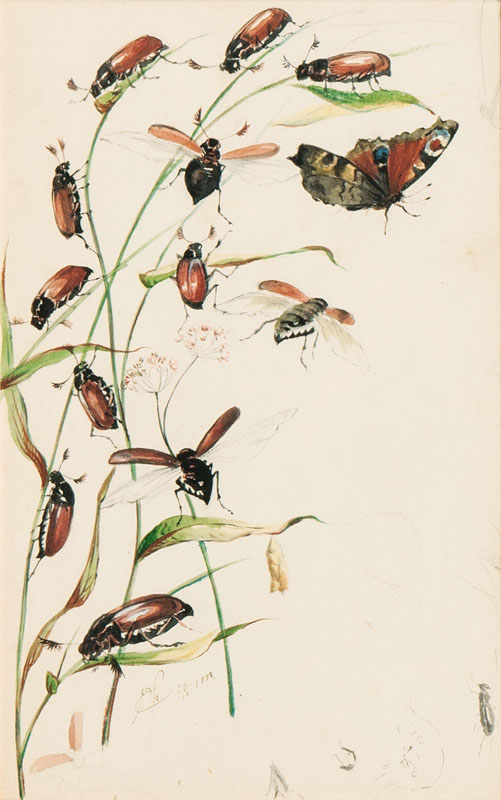 Blades with Chafers and a Butterfly