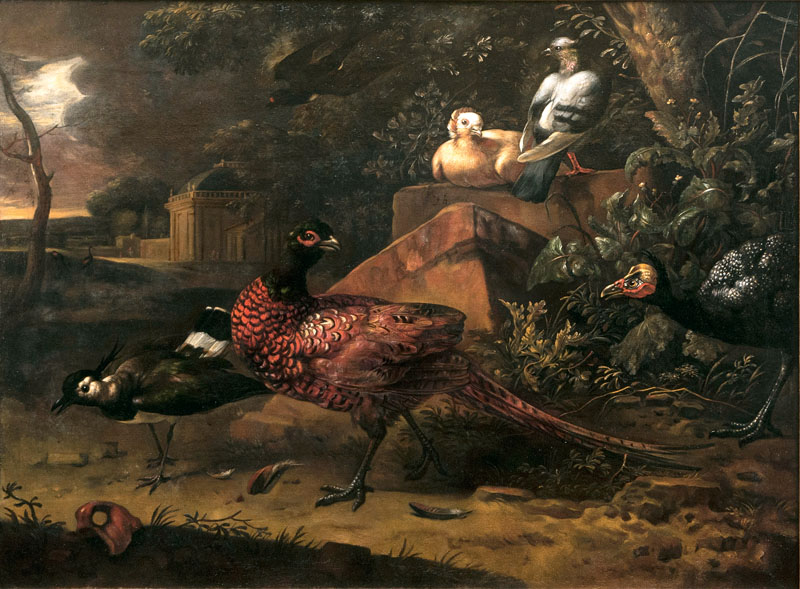 Birds in a Southern Landscape