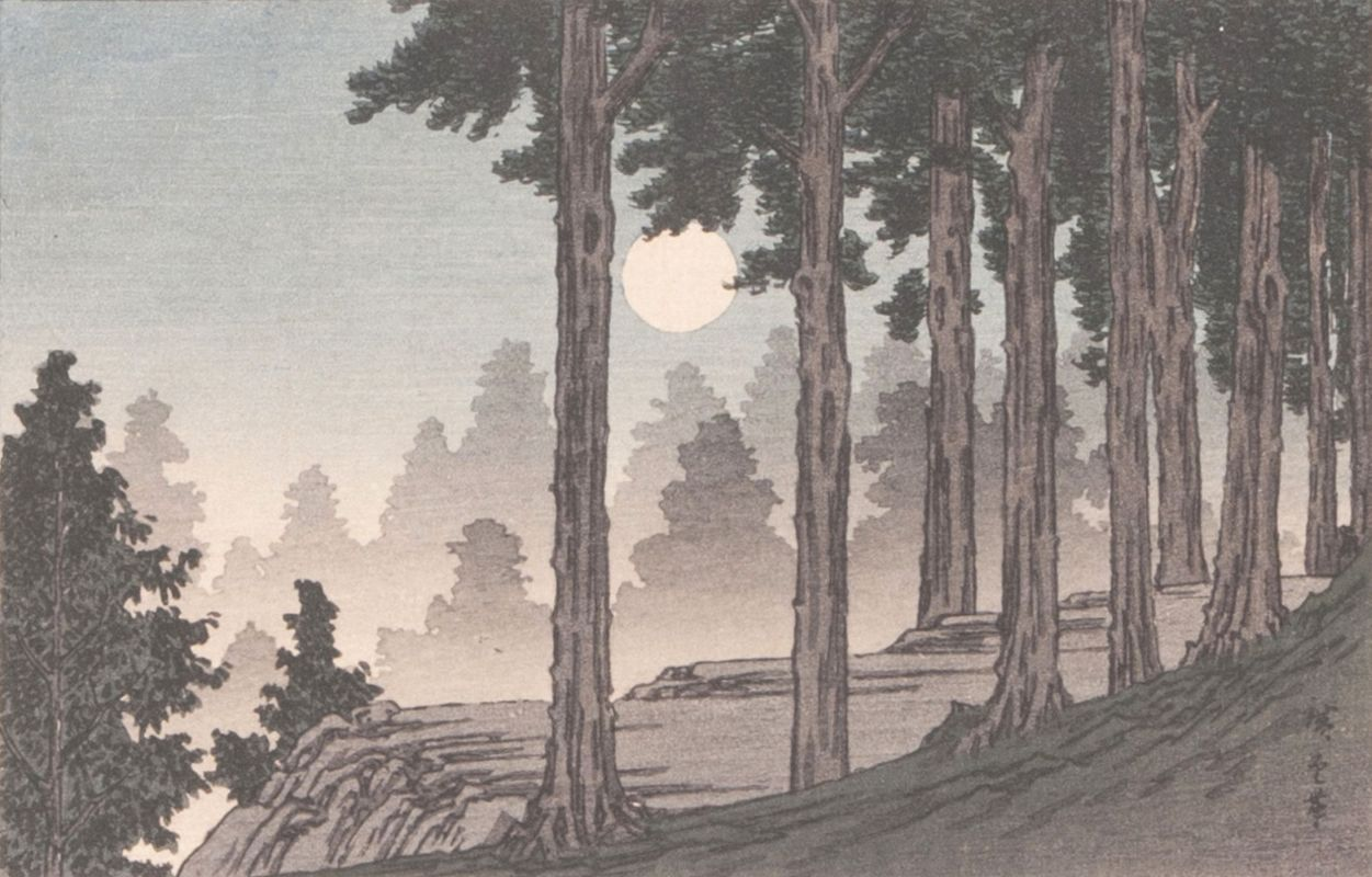 Full Moon over a Pine Wood