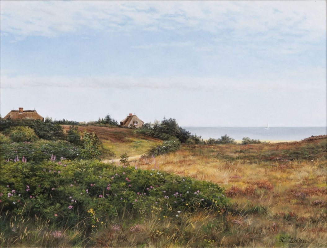 Summer Morning in the Braderup Heath on Sylt