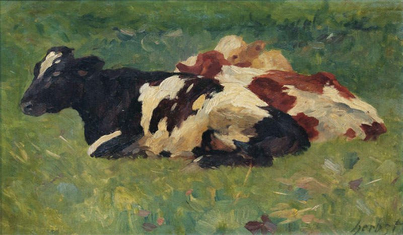 Three Resting Cows