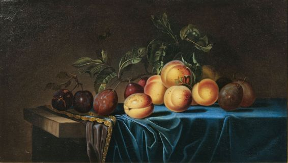 Still life with Apricots and Plums