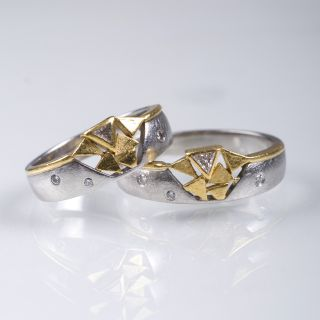 Two platinum gold rings