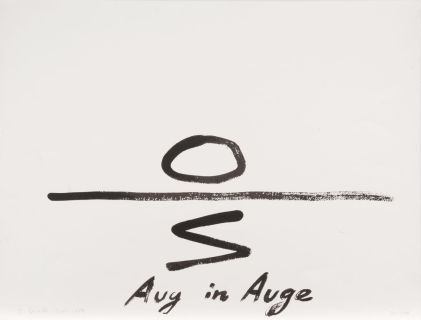 Aug in Auge