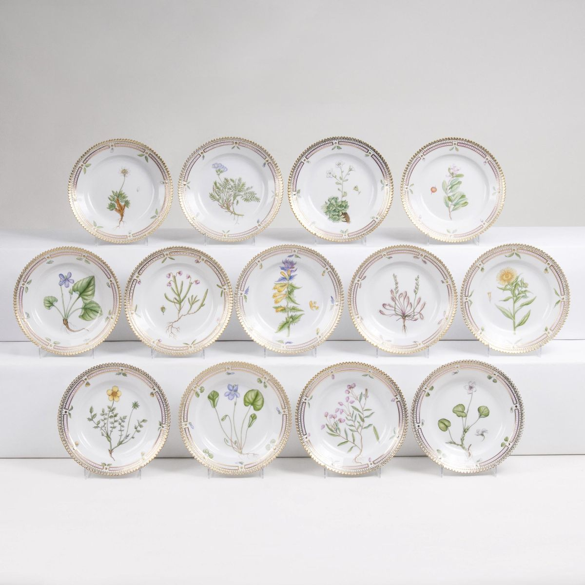 A Set of 13 small Side Dishes with Botanical Specimen