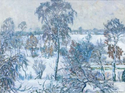 Winter in Hummelsbüttel